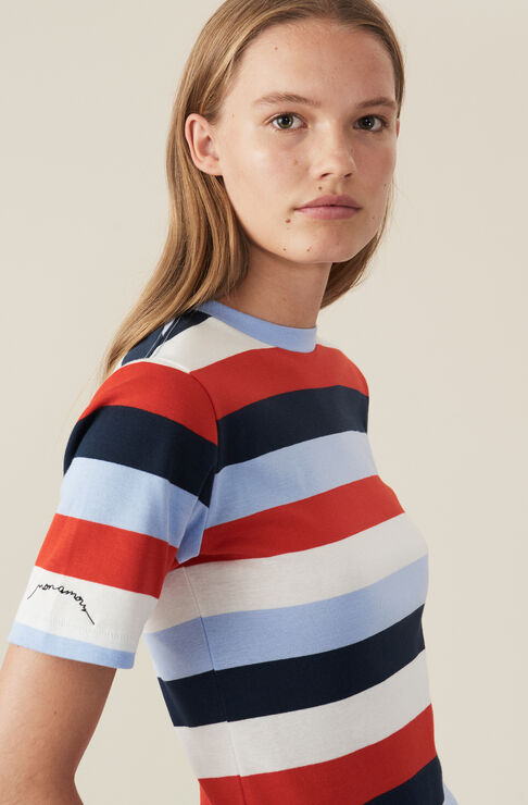 Everman T-shirt, Stripes, Multicolour, hi-res
